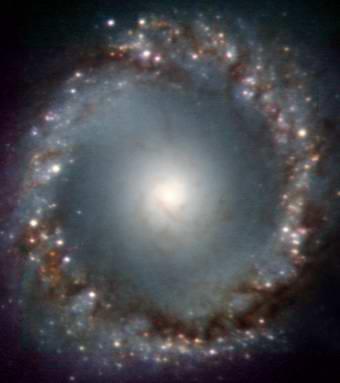 活動銀河:サラリーマン、宇宙を...